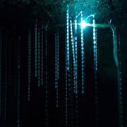 Пещеры светлячков. Вайтомо, Новая Зеландия   новая зеландия   вайтомо   пещера