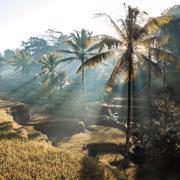 Bali, Indonesia | world | travel | bali