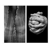 Photographer / Alicja Brodowicz | art | photographer | photography