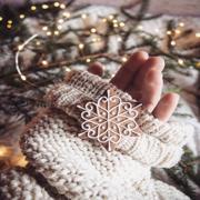Winter Holidays   winter   holidays   snow