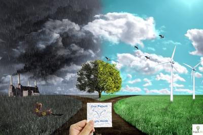 Экология в разных странах