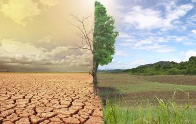 Изменения климата | Глобальное потепление