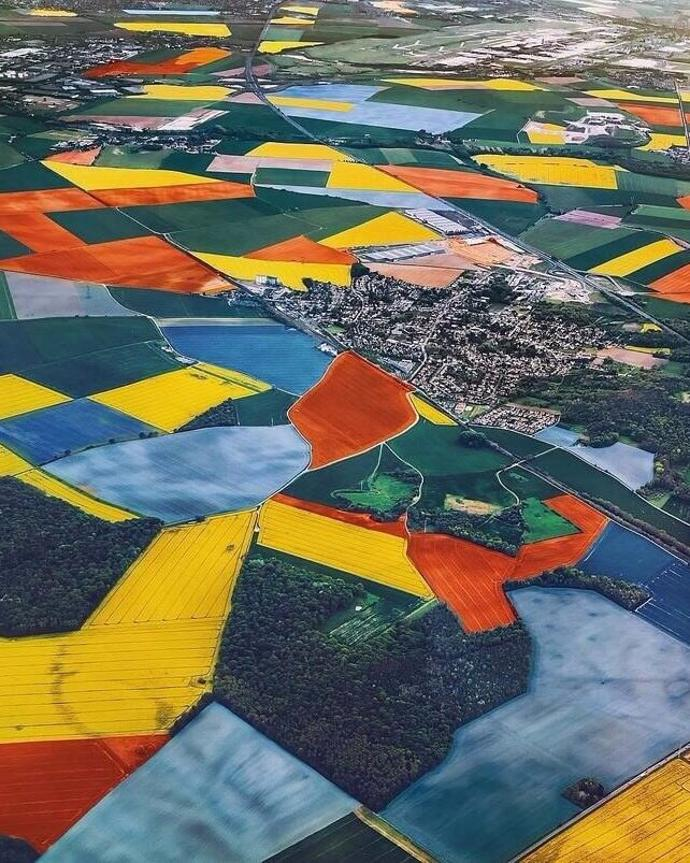Tulip fields | world | travel | netherlands