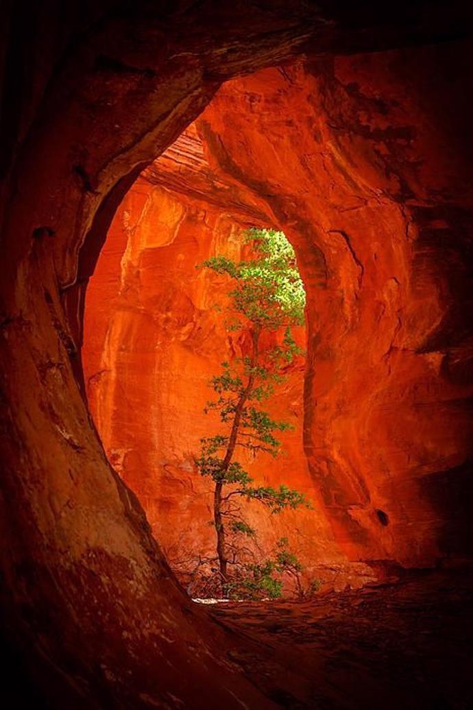 Boynton Canyon - Sedona, Arizona   world   travel   tourism
