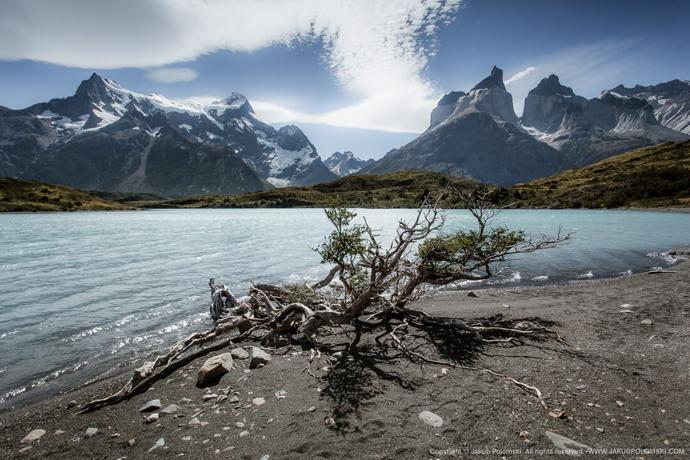 | природа | travel | torres del paine