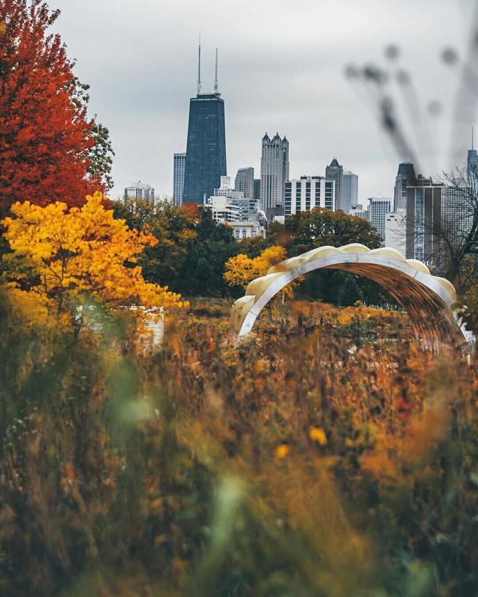 Chicago, Illinois | world | travel | chicago