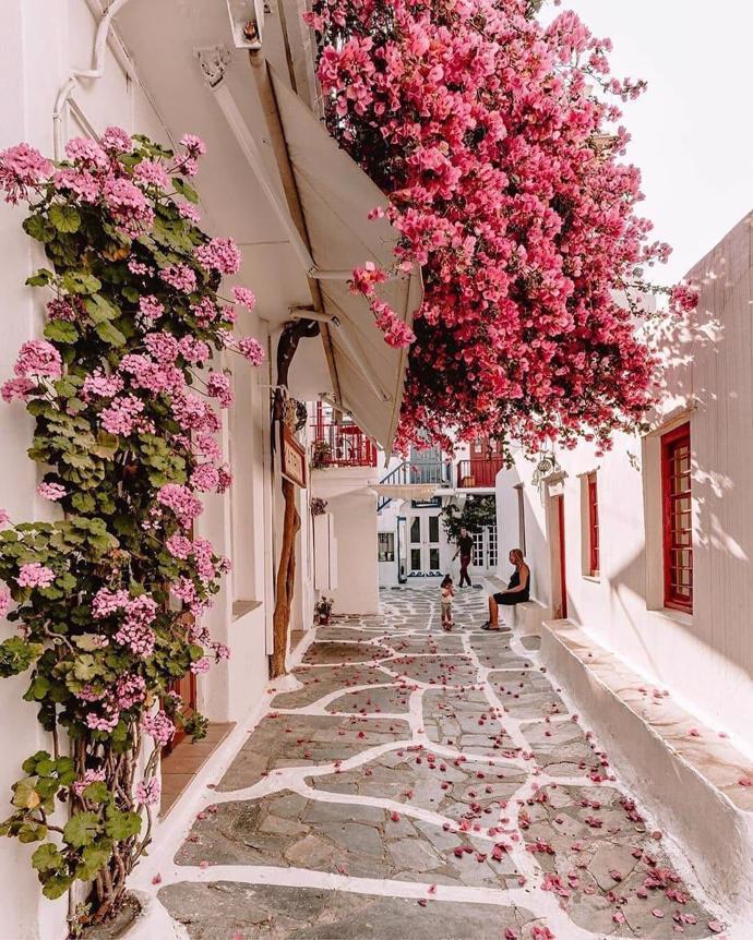 Mykonos, Greece | world | travel | mykonos