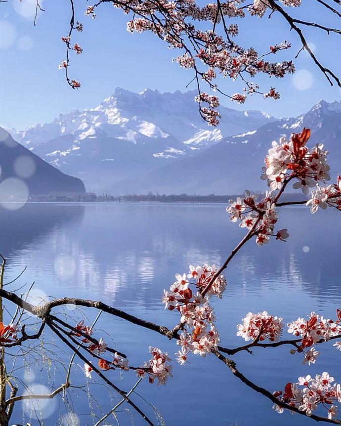 Montreux, Switzerland | world | travel | switzerland