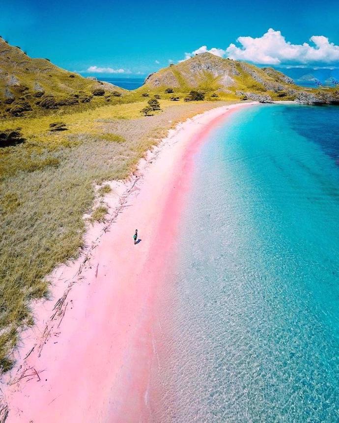 Pink Beach, Indonesia | world | travel | indonesia