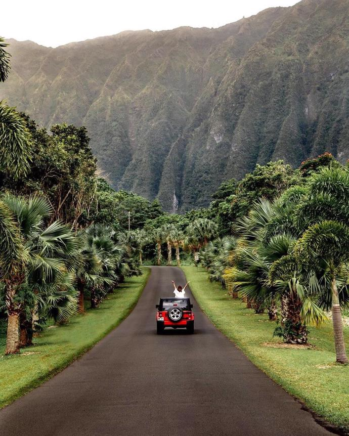 Hawaii | world | travel | hawaii