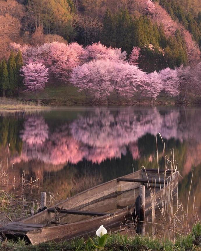 Japan   world   travel   japan