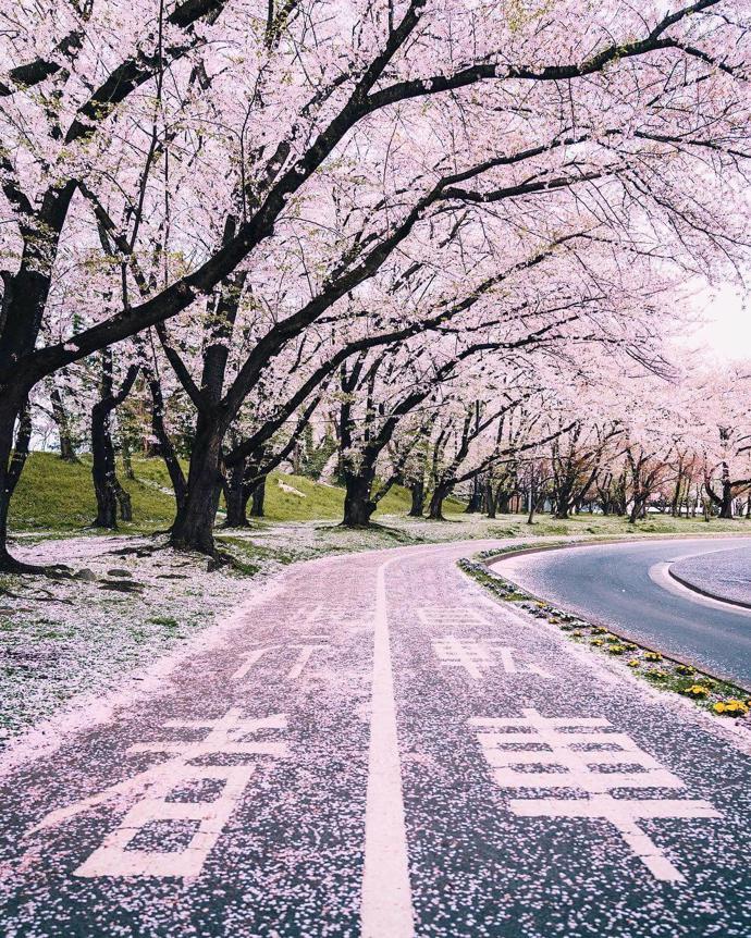 Yamagata, Japan | world | travel | yamagata
