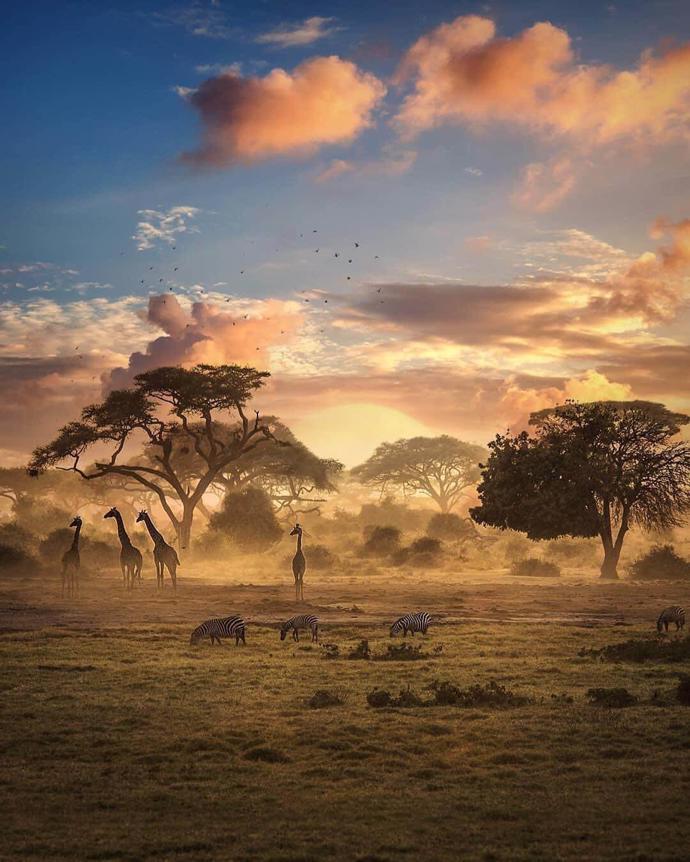 Zimbabwe   world   travel   zimbabwe