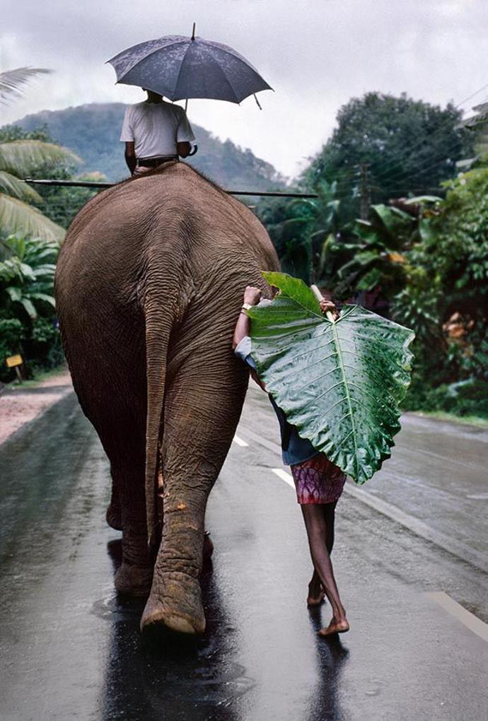 Sri Lanka   world   travel   tourism