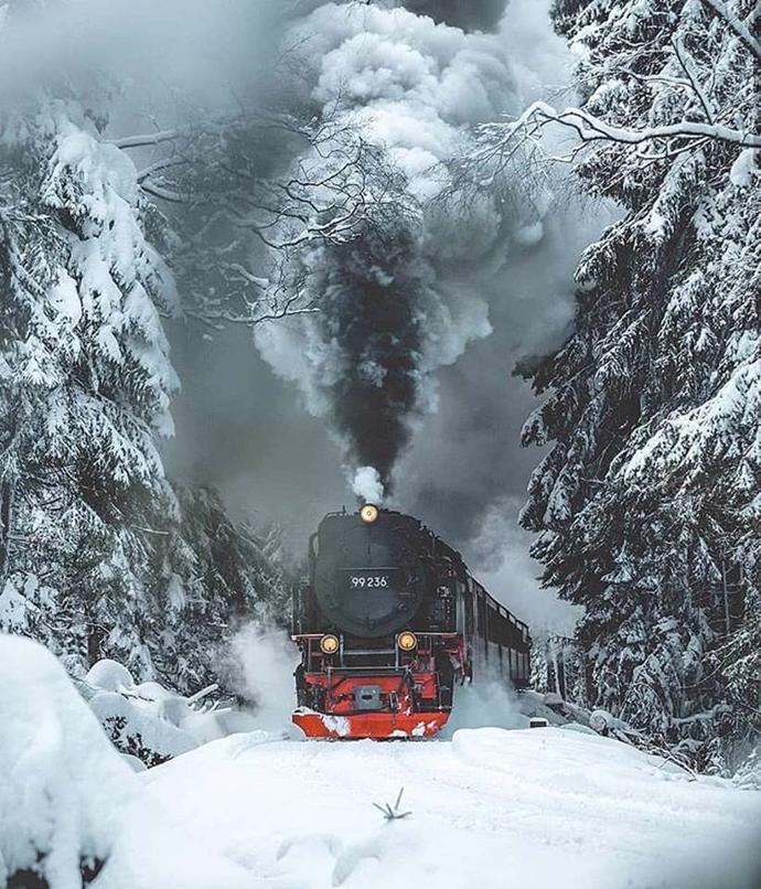 Harz National Park | harz national park | travel | travel art