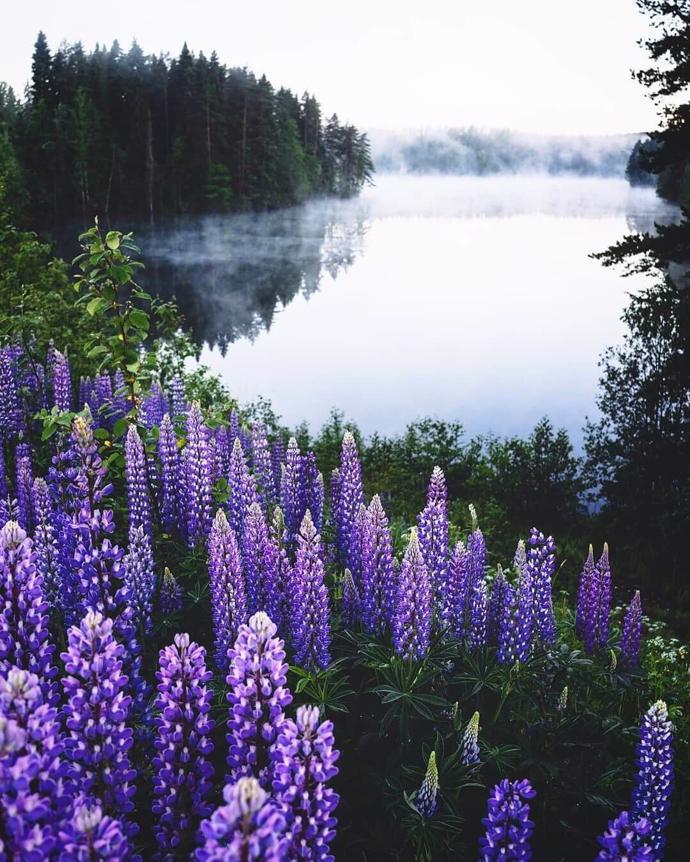 Finland   world   travel   finland