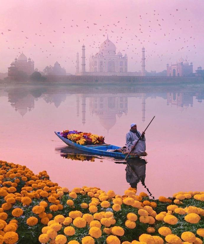 Taj Mahal | world | travel | taj mahal