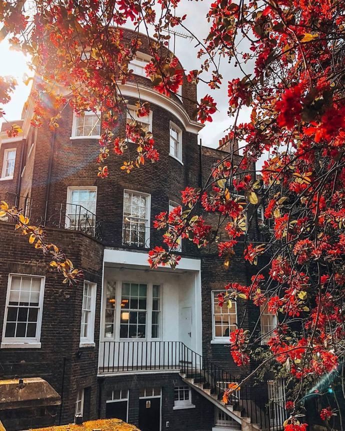 London, United Kingdom | world | travel | london